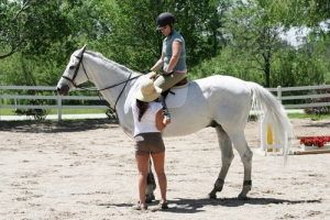 The healing power of horses: how horses can help beat addiction